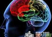 怎么让孩子的大脑更加灵活聪明