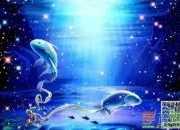 巨蟹座和双鱼座合不合适伟人配对:作为同样都是水象爱情的巨蟹座和双星座星座图片