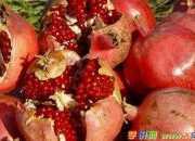 石榴的营养价值与作用