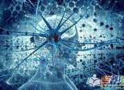 右脑图像记忆的原理是什么