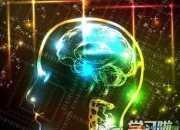 什么是右脑开发训练及原理