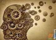什么是右脑图像记忆