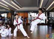 跆拳道学员十五条行为准则